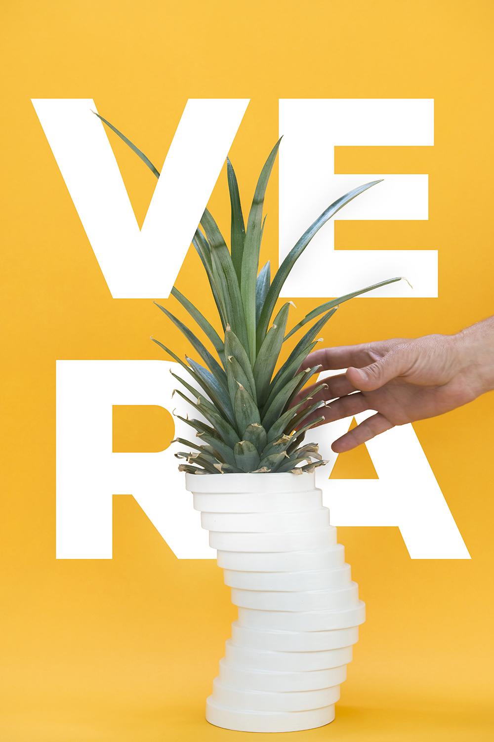VERA-poster
